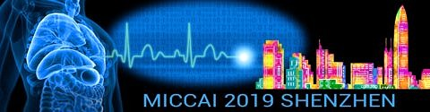 "Towards entry ""Poster Presentation at MICCAI"""
